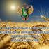 Поздравление с Днём работника сельского хозяйства и перерабатывающей промышленности Алтайского края