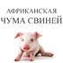 Внимание, АЧС в Словакии, Болгарии и Сербии!